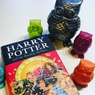 #LiteraryAnniversary Remembering the Fallen of the Battle of Hogwarts #onthisday #battleofhogwarts #Literature #bookish #HarryPotter #Hogwarts #Gryffindor #bookstagram ©theliteratigirl