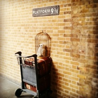 "Trying to get onto Platform 9 3/4 at King's Cross, London. Some idiot wizard crashed his trolley into the wall. The muggles have started to notice. Plus that owl is really inconspicuous, mate... I'm off home. And by ""home"" I clearly mean #Hogwarts! ©studyreadwrite"