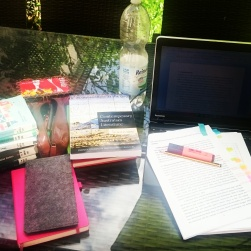 Outdoor Study Session, writing my M.A. thesis. ©theliteratigirl